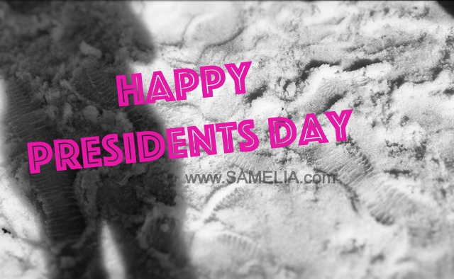 George Washington, presidents day, president, Donald trump, president trump, samelia's world, samelia, samelia miller, samelia trump