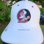 florida state football, college football, Florida state vs Um, Fsu vs Miami, samelia, samelia miller, Samelia miller, Samelia's world blog