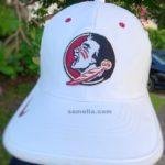 florida state football, college football, Florida state vs Um, Fsu vs Miami, samelia, samelia miller, Samelia miller, Samelia's world blog